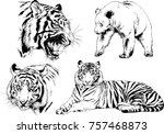 set of vector drawings on the... | Shutterstock .eps vector #757468873