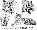 set of vector drawings on the... | Shutterstock .eps vector #757471393