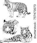set of vector drawings on the... | Shutterstock .eps vector #757473073