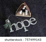 christmas message hope | Shutterstock . vector #757499143