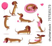 set with cute cartoon dachshund | Shutterstock .eps vector #757535173
