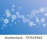 White Snowflake Macro Vector...