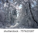 beautiful christmas snowy day    Shutterstock . vector #757623187