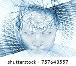 3d rendering   mind field... | Shutterstock . vector #757643557