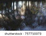 autumn pound reflection | Shutterstock . vector #757710373