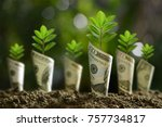 image of bank notes rolled... | Shutterstock . vector #757734817