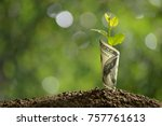 image of bank note with plant... | Shutterstock . vector #757761613