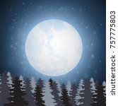 night landscape with coniferous ... | Shutterstock .eps vector #757775803