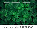 tropical green leaf with water... | Shutterstock . vector #757975063