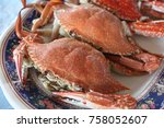 Small photo of Flower crab Blue crab Blue swimmer crab Blue manna crab