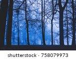 foggy morning in park | Shutterstock . vector #758079973