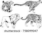 set of vector drawings on the... | Shutterstock .eps vector #758099047