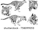 set of vector drawings on the... | Shutterstock .eps vector #758099053