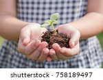 Small photo of Tree planting growing on soil in girl child's hand for saving world environment, tree care, arbor day,Tu Bishvat (B'Shevat) environmental protection, ecological education concept for school students