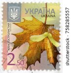 Small photo of UKRAINE - CIRCA 2013: stamp printed in Ukraina shows Norway maple leaf (Acer platanoides) and fruit; double samara with two winged seeds; 2.50; yellow; circa 2013