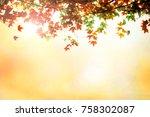 thanksgiving backgrounds... | Shutterstock . vector #758302087