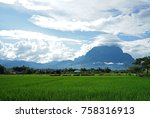 rice field with mountain view | Shutterstock . vector #758316913