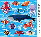 sticker template with many sea... | Shutterstock .eps vector #758329153
