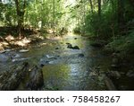 igneada forest and river. small ... | Shutterstock . vector #758458267