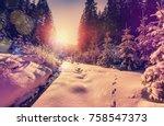 fantastic winter forest... | Shutterstock . vector #758547373