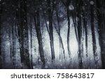 fantasy winter landscape with... | Shutterstock . vector #758643817
