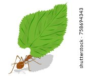 leaf cutter ant vector. red ant ... | Shutterstock .eps vector #758694343