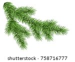 spruce branch isolated on white ... | Shutterstock .eps vector #758716777