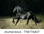 beautiful friesian horse... | Shutterstock . vector #758776837