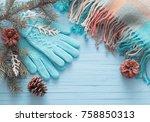 blue gloves and christmas fir... | Shutterstock . vector #758850313