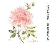 watercolor illustration of a... | Shutterstock . vector #758859127
