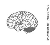 brain sign illustration. vector....   Shutterstock .eps vector #758897473