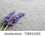 lavender on stone background | Shutterstock . vector #758921053