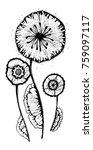 vintage flower  vector | Shutterstock .eps vector #759097117