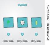 flat icons lettuce  pumpkin ... | Shutterstock .eps vector #759196747