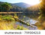 moraine lake kleiner arbersee... | Shutterstock . vector #759304213