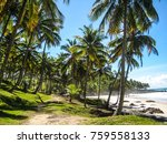 gorgeous itacare beach in brazil | Shutterstock . vector #759558133