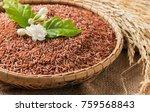 jasmine brown rice beery  in... | Shutterstock . vector #759568843