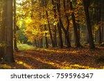 sunset in nature   Shutterstock . vector #759596347
