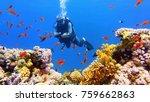 man scuba diver near beautiful... | Shutterstock . vector #759662863