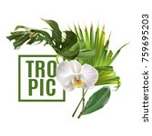 vector botanical banner with... | Shutterstock .eps vector #759695203
