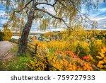 Autumn City Plyos From The...
