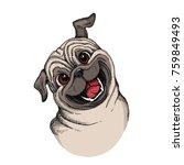 cute pug head illustration.... | Shutterstock .eps vector #759849493