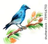 blue bird on a pine tree | Shutterstock . vector #759916753