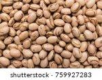 phaseolus vulgaris is... | Shutterstock . vector #759927283