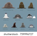 pinniped sitting front set... | Shutterstock .eps vector #759996727