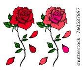 rose vector illustration.... | Shutterstock .eps vector #760537897