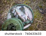 Fresh Fish Vimba In The Fishin...