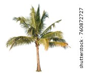 a photo of coconut tree on... | Shutterstock . vector #760872727