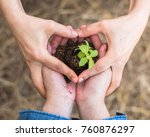Small photo of CSR go green, arbor (Tu Bishvat/Tu B'Shevat) day and world environment protection concept with volunteer planting young tree bud growing on soil in community together people's heart-shaped hands