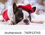 french bulldog posing in santa... | Shutterstock . vector #760913743